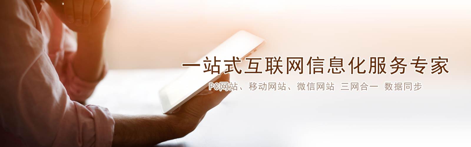 公司网站定制开发